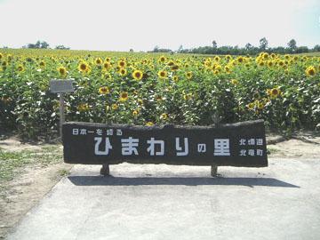 2007_8_15_6.jpg