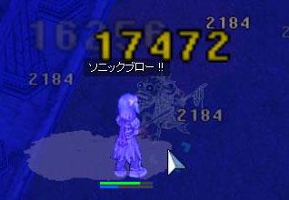 2008_2_7_1.jpg